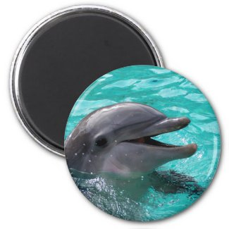 Dolphin head in aquamarine water 2 inch round magnet