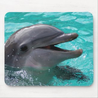 Dolphin head in aquamarine water mousepads