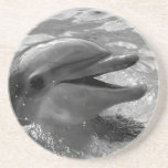 Dolphin head in water mouth open Black and White Beverage Coasters