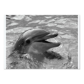 Dolphin head in water mouth open Black and White Card