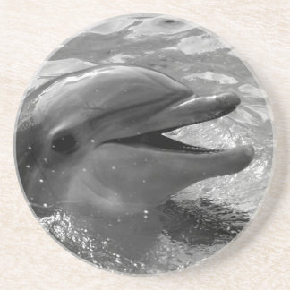 Dolphin head in water mouth open Black and White Drink Coaster