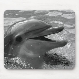 Dolphin head in water mouth open Black and White Mouse Pad