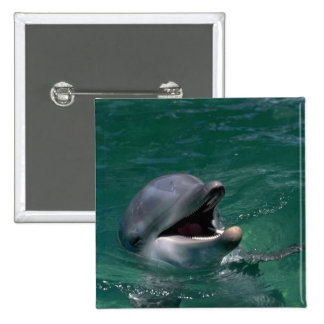 Dolphin Head Out Of Water Pinback Buttons