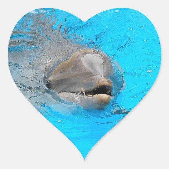 Dolphin Heart Shape Stickers