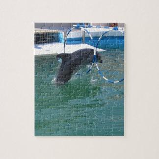 Dolphin Hoop Jigsaw Puzzle