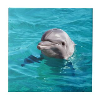 Dolphin in Blue Water Photo Ceramic Tile