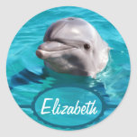 Dolphin in Blue Water Photo Classic Round Sticker