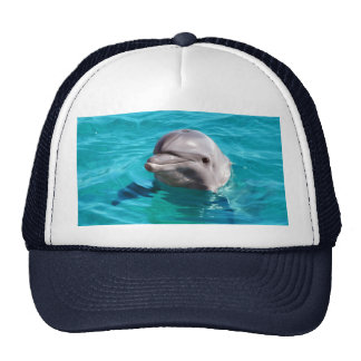 Dolphin in Blue Water Photo Trucker Hat
