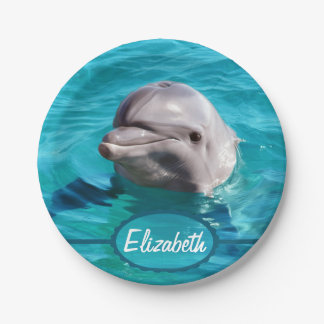 Dolphin in Blue Water Photo 7 Inch Paper Plate