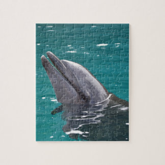 Dolphin In Green Jigsaw Puzzle