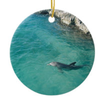 Dolphin in Mexico Ceramic Ornament