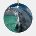 Dolphin in the Bahamas Christmas Tree Ornaments