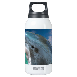 Dolphin in the Bahamas Insulated Water Bottle