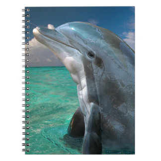 Dolphin in the Bahamas Notebook