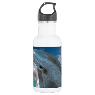 Dolphin in the Bahamas Water Bottle