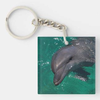 Dolphin in the Solomon Islands Keychain