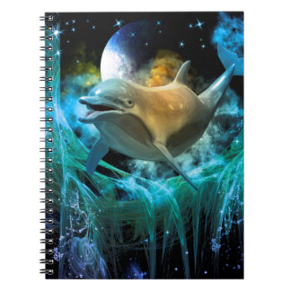 Dolphin in the universe notebook