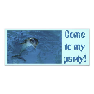 Dolphin Invitation