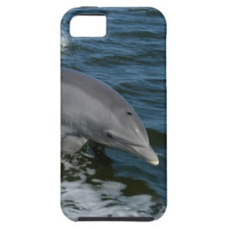 Dolphin iPhone-5 Case-Mate iPhone SE/5/5s Case
