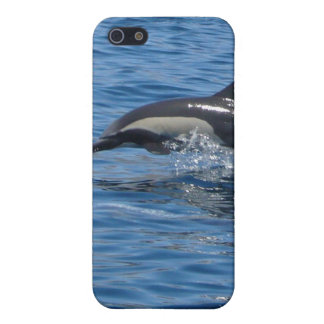 Dolphin iPhone Case iPhone 5 Case