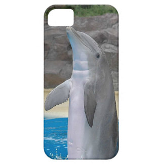 Dolphin iPhone SE/5/5s Case