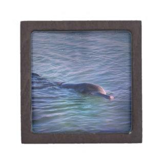 Dolphin Jewelry Box