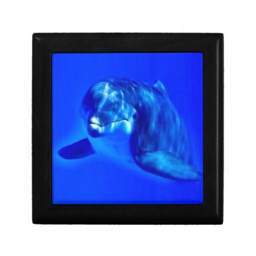 Dolphin Jewelry Boxes