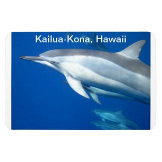 Dolphin Journeys Magnet