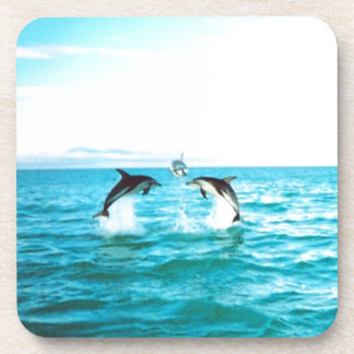 Dolphin Jumping Coasters 6