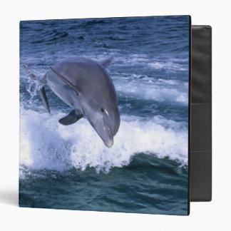 Dolphin jumping, Grand Bahama, Bahamas 3 Ring Binder