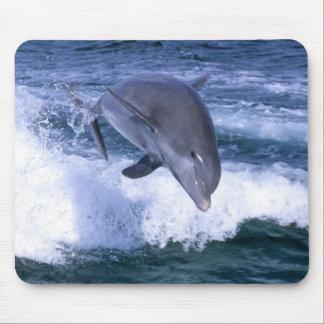 Dolphin jumping, Grand Bahama, Bahamas Mouse Pad
