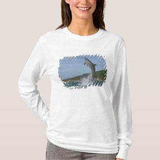 Dolphin jumping, Roatan, Bay Islands, Honduras T-Shirt