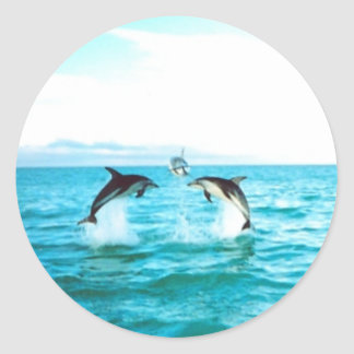 Dolphin Jumping Sticker Circle