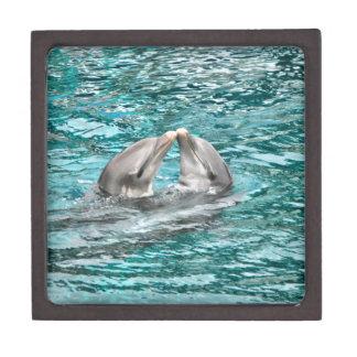 Dolphin Kiss Gift Box