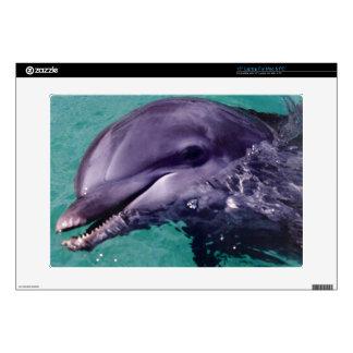 Dolphin Laptop skin
