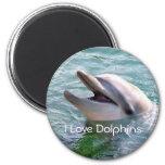 Dolphin Magnet Fridge Magnets