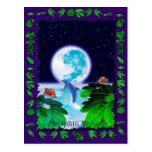 DOLPHIN MOON Paradise Art Series Post Cards