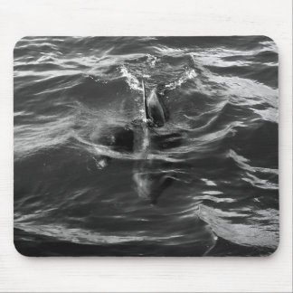 Dolphin Mother and Baby Mouse Pad