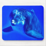 Dolphin Mousepad