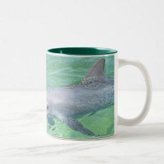 dolphin mug 1