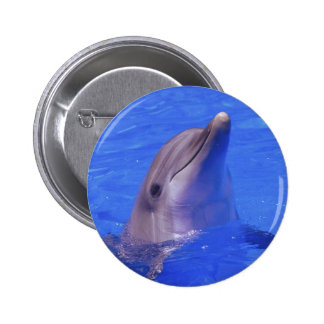 Dolphin Nose 2 Inch Round Button