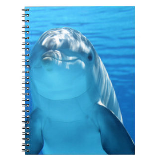 Dolphin Note Book