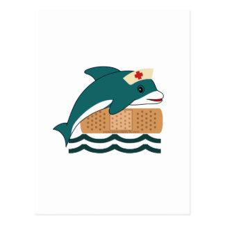 Dolphin Nurse Postcard