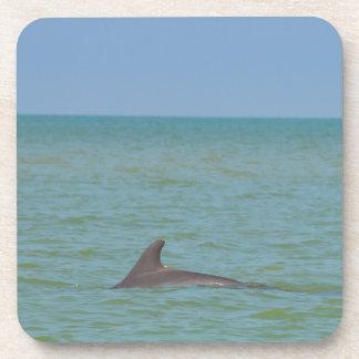 Dolphin on Sanibel Coaster