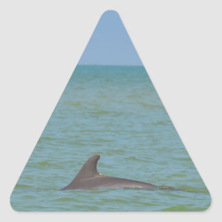 Dolphin on Sanibel Triangle Sticker
