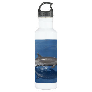 Dolphin Photo Stainless Steel Water Bottle