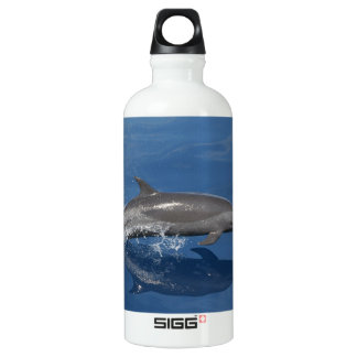 Dolphin Photo Water Bottle