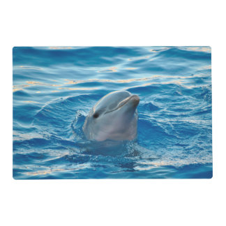 Dolphin Placemat