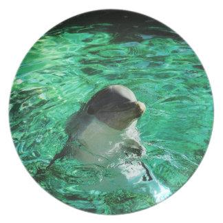Dolphin Dinner Plates