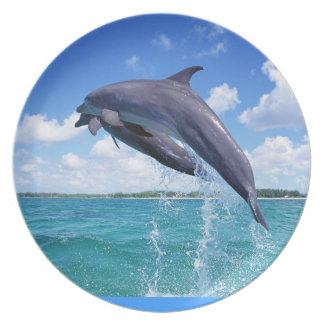 Dolphin - Plate